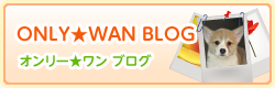 ONLY☆WAN ブログ